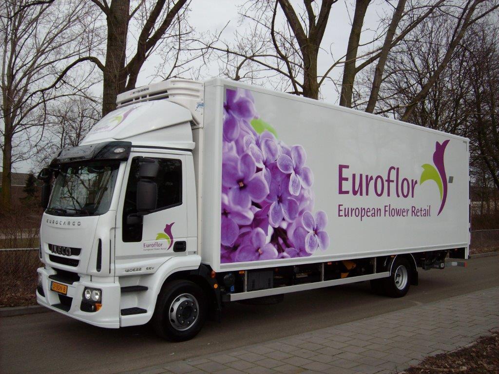 euroflor eurocargo lv 3
